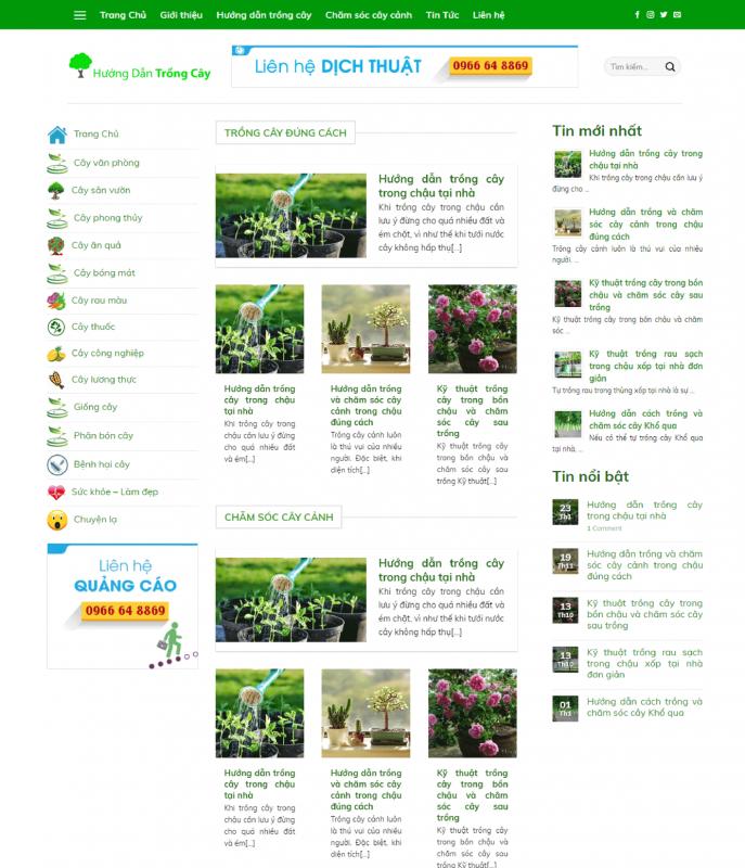 huong dan trong cay 1 687x800 - Thiết Kế Website