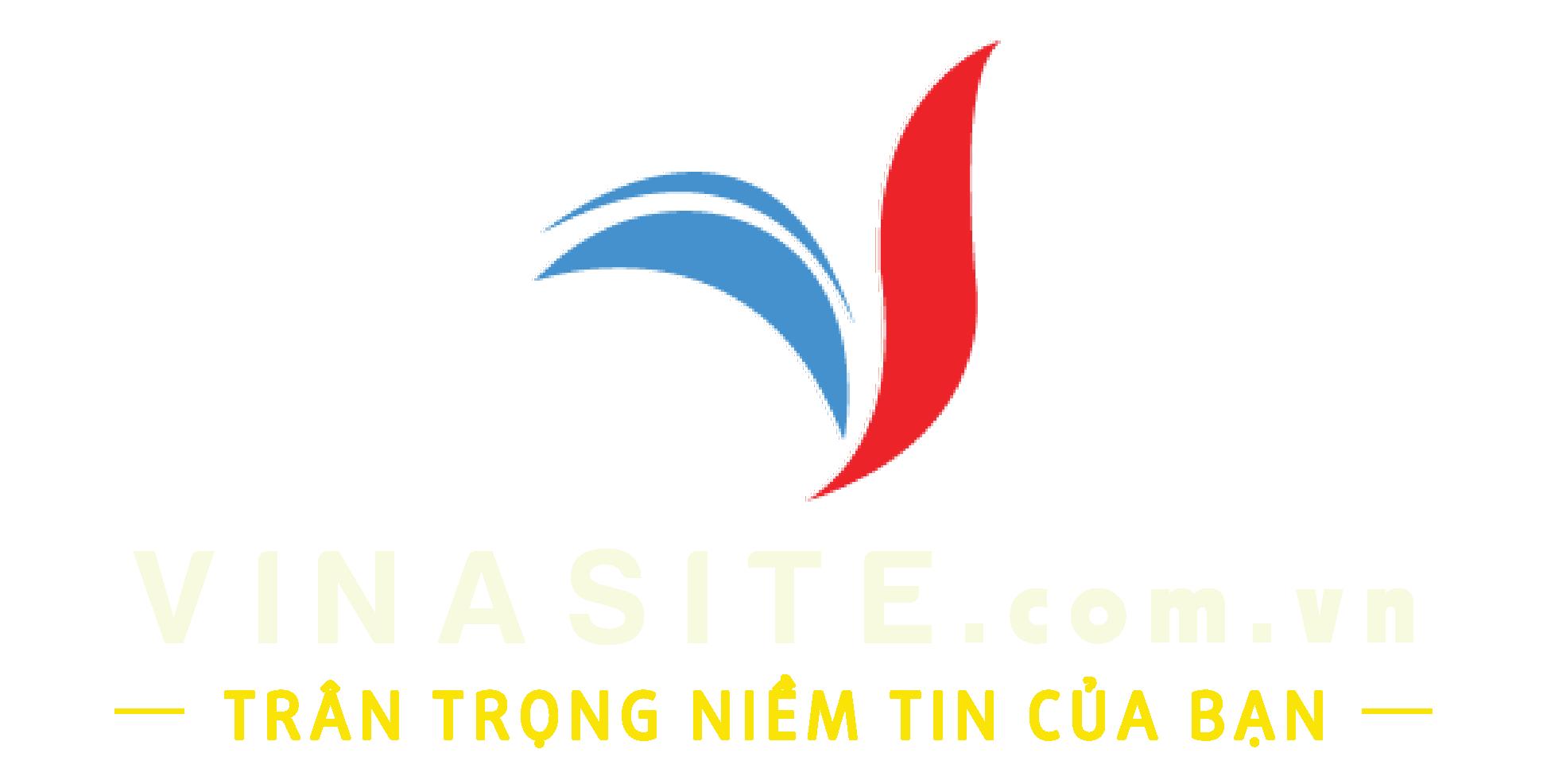 Dịch Vụ Marketing Online Chuyên Nghiệp – Công Ty VinaSite